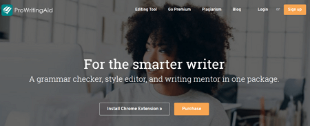 ProWritingAid a grammarly alternative