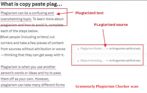 Is grammarly plagiarism checker accurate