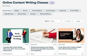 Online content writing course