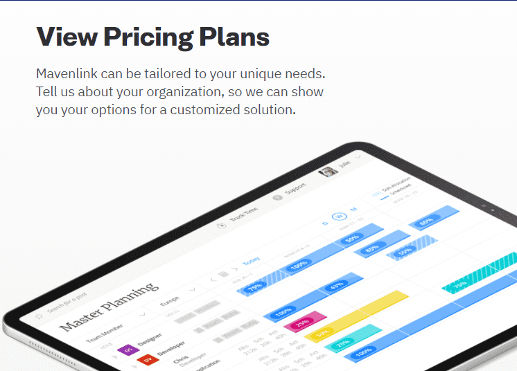Mavenlink Pricing